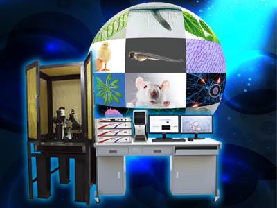 非损伤微测系统(全能型)